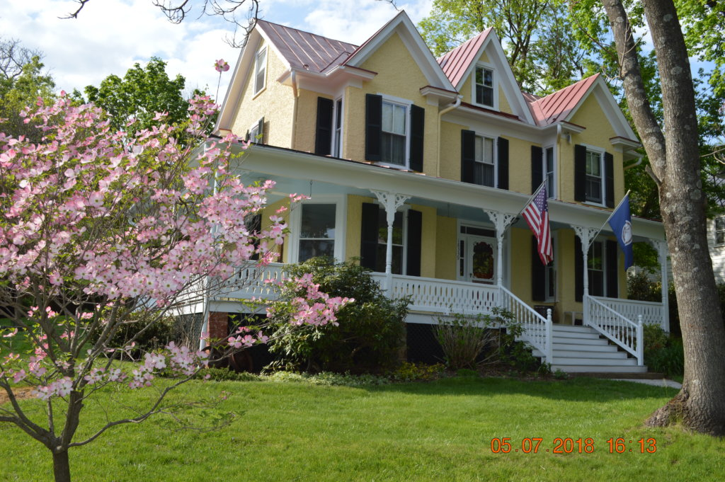 Pink Dogwood in Bloom at 18339 Railroad Street in the Historic Village of Bluemont, Virginia