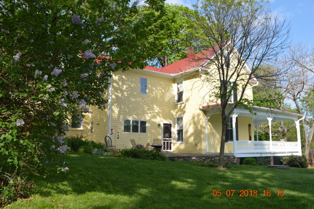 Lilac in bloom at 18339 Railroad Street in Bluemont, Virginia