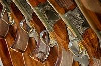 The Lake Havasu Firearms Show 2016 features modern as well as antique guns, a variety of knives, collectibles coins, leather goods and jewelry.