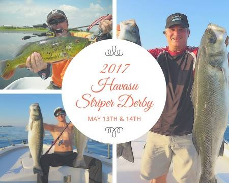 Attention fishermen! Show off your skills out on the lake May 13th & 14th by entering the 2017 Havasu Striper Derby. Several options to win big $$!
