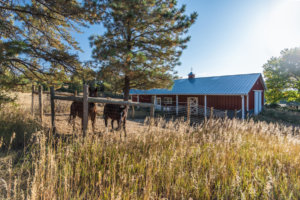 Karen Gustafsonrelocation Specialist Greenwood Village Co Real Estate 7843 E Ponderosa Lane 051 053 Barn Mls Size